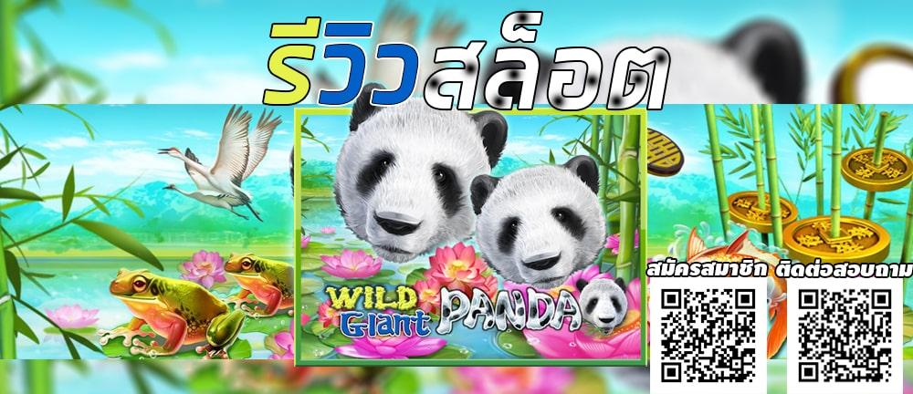 Wild Giant Panda Jokerslot191